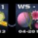 WS2 gruenschnabel klein