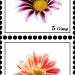 Briefmarke7